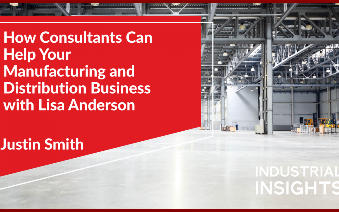 How Consultants Can Help Your Manufacturing and Distribution Business with Lisa Anderson